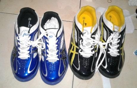 Harga Sepatu Volly Profesional Terbaru Original dan KW 16