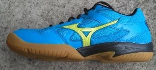 Sepatu Volly Mizuno dan Harganya Original dan KW 12